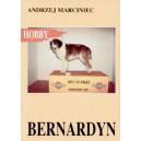 Bernardyn Pies św. Bernarda