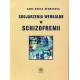 Skojarzenia werbalne w schizofrenii