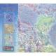 Cytodiagnostyka w ambulatoryjnej opiece ginekologicznej (DVD) Atlas multimedialny
