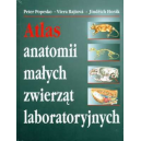 Atlas anatomii małych zwierząt laboratoryjnych