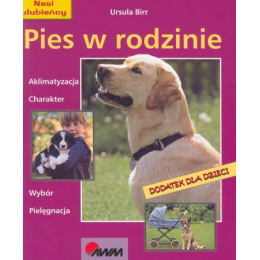 Pies w rodzinie Aklimatyzacja, charakter, wybór, pielęgnacja
