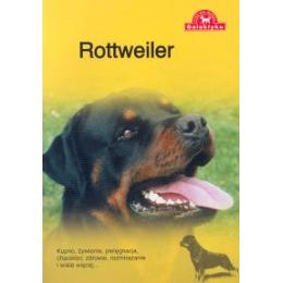 Rottweiler Kupno, żywienie, pielęgnacja, charakter, zdrowie, rozmnażanie i wiele więcej...
