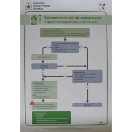 Plakat Zaawansowane zabiegi resuscytacyjne. Algorytm postępowania w bradykardii