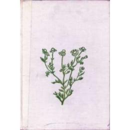 Rośliny lecznicze Podstawy biologii i agrotechniki