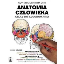Anatomia człowieka atlas do...