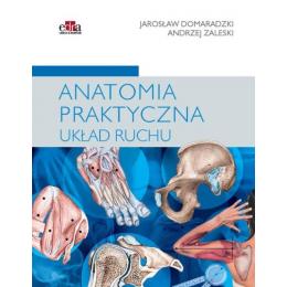 Anatomia praktyczna układu...