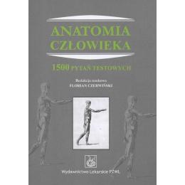 Anatomia człowieka 1500...