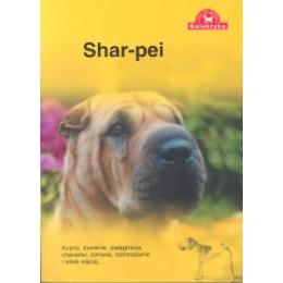 Shar-pei Kupno, żywienie, pielęgnacja, charakter, zdrowie, rozmnażanie i wiele więcej...
